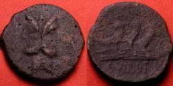Ancient Coins - C VIBIUS PANSA AE as. Circa 90 BC. TRIPLE prow right, head of Janus. Scarce.