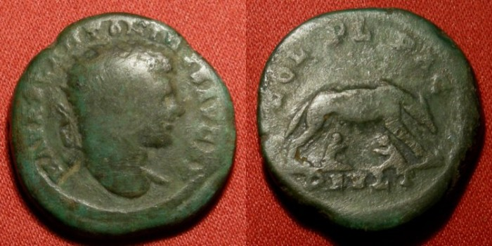 Ancient Coins - CARACALLA AE 25mm 'dupondius'. Deultum, Thrace. She-Wolf suckling twins Romulus & Remus. Rare