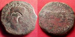 Ancient Coins - TIBERIUS AE as. Graccurris, Spain. Bull standing right, temple pediment atop his horns. Legionary Eagle countermark on portrait.