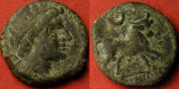 Ancient Coins - CASTULO, SPAIN AE 20mm. 2nd-1st century BC. Bull standing, crescent above