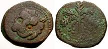 World Coins - VF/VF Norman kings of Sicily, William II Æ Trifollaro / Lion Mask / Palm tree