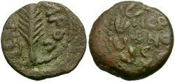 Ancient Coins - Judaea. Porcius Festus. Procurator Under Nero Æ Prutah / Palm Branch