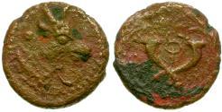Ancient Coins - Palmyrene. Palmyra Æ16 / Bull