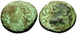 Ancient Coins - Augustus, Phoenicia, Berytus Æ22 / Priest Ploughing