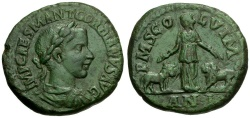 Ancient Coins - Gordian III.  Moesia Superior. Viminacium Æ31 / Moesia with Bull and Lion