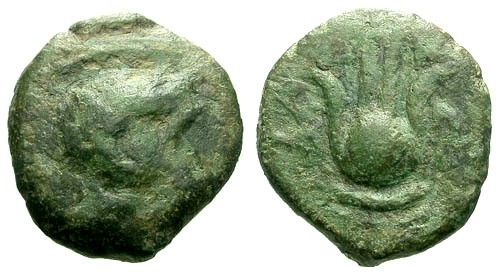 Ancient Coins - aVF/aVF Ptolemaic Kings of Egypt Ptolemy X Joint reign with Cleopatra III Cyprus under Ptolemaic rule AE13 / Zeus and Headdress of Isis RRR