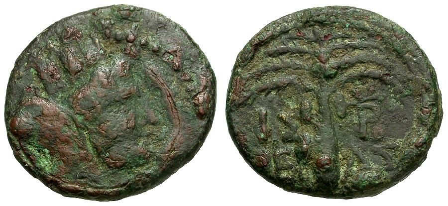 Ancient Coins - Phoenicia.  Tyre Æ16 / Tyche / Palm Tree