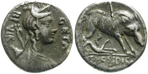Ancient Coins - aVF/aVF Hosidia 1 Roman Republic Denarius / Wild boar of Calydon