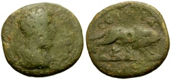 Ancient Coins - Commodus, Mysia Parium Æ23 / Wolf and Twins