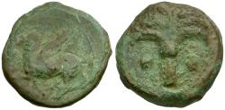 Ancient Coins - Zeugitania. Carthage Æ16 / Palm tree