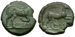 Ancient Coins - Apulia, Arpi Æ19 / Bull & Horse