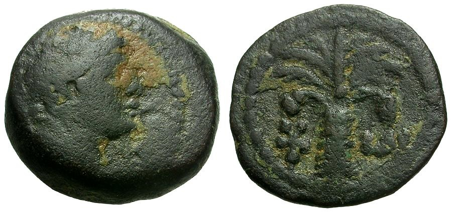 Ancient Coins - Phoenicia.  Tyre Æ12 / Melqart / Palm Tree