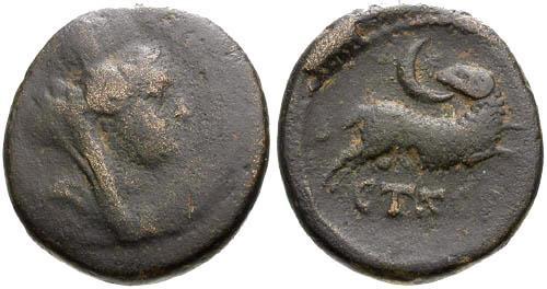 Ancient Coins - aF/gF+ Seleucis and Pieria Antioch AE19 / Star of Bethlehem