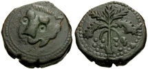 World Coins - Norman Kings of Sicily, William II Æ Trifollaro / Lion & Palm Tree
