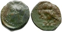 Ancient Coins - Sicily. Kamarina Æ Tetras / Owl