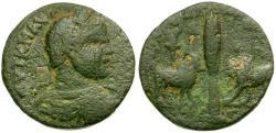Ancient Coins - Elagabalus. Phoenicia. Arados Æ26 / Cypress Between Bull and Lion
