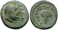 Ancient Coins - Lydia. Sala. Pseudo-Autonomous. Melitonos, archon Æ14 / Grapes