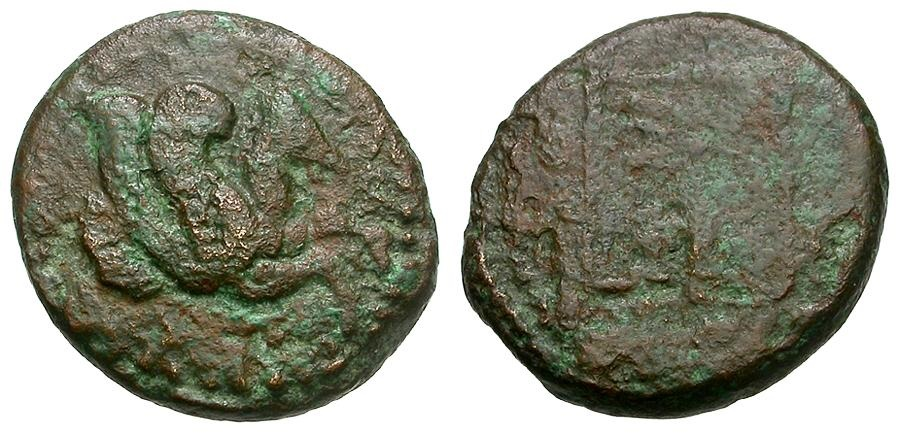 Ancient Coins - Troas.  Skepsis Æ12 / Pegasus / Fir Tree