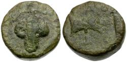 Ancient Coins - Kings of Thrace. Amatocus or Amadokos II Æ20 / Grapes & Double Axe