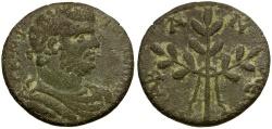 Ancient Coins - Caracalla. Caria. Alabanda Æ25 / Laurel Branch
