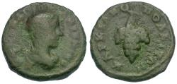Ancient Coins - Caracalla (AD 198-217). Moesia Inferior. Marcianopolis Æ16 / Grapes