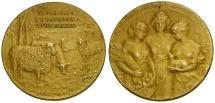 Ancient Coins - Argentina.  Sociedad Rural Argentina Brass Medal