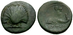 Ancient Coins - Apulia, Butuntum Æ18 / Scallop Shell / Dolphin Rider