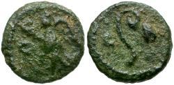 Ancient Coins - Phoenicia. Berytos. Time of Trajan. Pseudo-Autonomous Issue Æ11  / Lituus