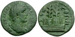 Ancient Coins - Antoninus Pius. Pisidia. Selge Æ24 / Styrax Trees