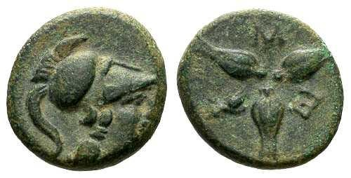 Ancient Coins - EF/VF Lucania Metapontion AE13 / Corn Grains