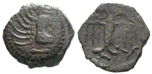 Ancient Coins - VF/VF Carnutes Tribe Bronze / Bird facing
