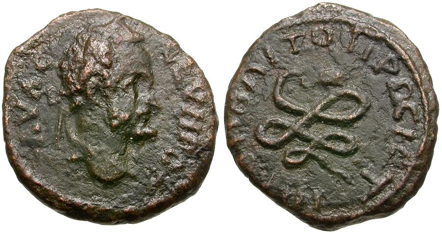 Ancient Coins - Septimius Severus (AD 193-211). Moesia Inferior. Nicopolis ad Istrum Æ17 / Snake