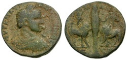 Ancient Coins - Elagabalus. Phoenicia. Arados Æ27 / Cypress Between Bull and Lion