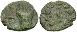 Ancient Coins - Judaea. Bar Kochba Revolt. Coponius Æ20 / Lyre