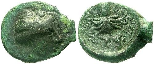 Ancient Coins - VF/VF Sicily Syracuse AE14 / Octopus