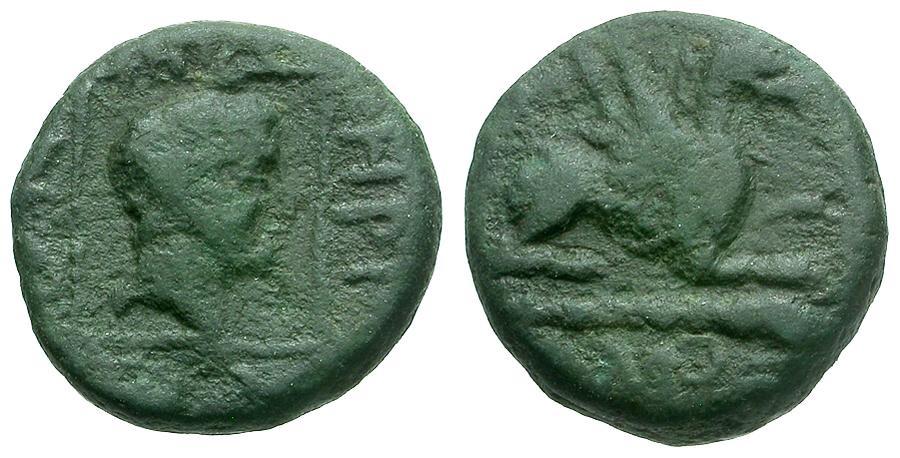 Ancient Coins - Thrace.  Abdera Æ13 / Griffin
