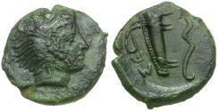 Ancient Coins - Sicily. Selinos Æ Hexas or Hemilitron / Head of Herakles