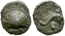 Ancient Coins - Calabria. Taras AR Half-Litra / Cockle-shell