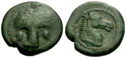 Ancient Coins - gF+/VF Zeugitania, Carthage  Æ19 / Horse head / Palm tree