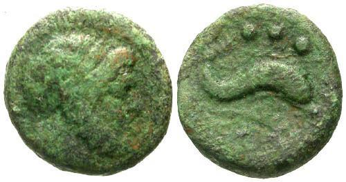 Ancient Coins - F/aVF Lucania Poseidonia-Paestum AE Quadrans / Dolphin