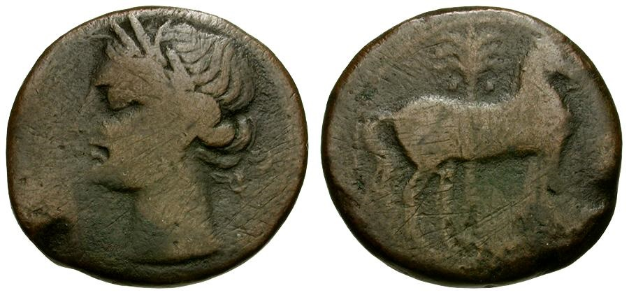 Ancient Coins - Zeugitania. Carthage Æ23 / Tanit / Horse