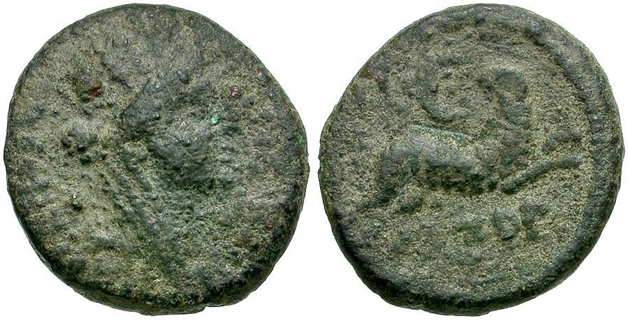 Ancient Coins - Seleucis and Pieria. Antioch Æ18 / Ram