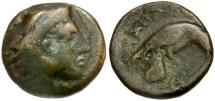 Ancient Coins - Kings of Macedon. Amyntas III Æ16 / Herakles and Eagle