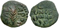 Ancient Coins - Judaea. Porcius Festus. Procurator Under Nero Æ Prutah / Palm Branch