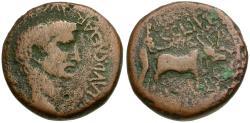 Ancient Coins - Claudius (AD 41-54). Phoenicia. Berytus Æ24 / Founder Ploughing
