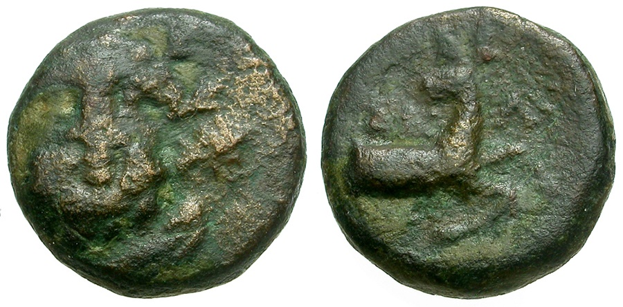 Ancient Coins - Pisidia.  Selge Æ12 / Herakles and Stag