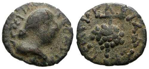 Ancient Coins - F/aVF Quasi-Autonomous AE15 / Grapes