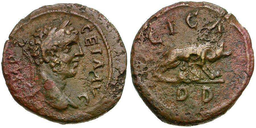 Ancient Coins - Geta, as Augustus (AD 209-211). Bithynia. Apamea Æ21 / She-wolf & Twins