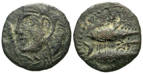 Ancient Coins - aVF/gF Celtic Bronze of Gades / Two Tuna
