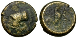 Ancient Coins - Campania. Cales Æ18 / Rooster
